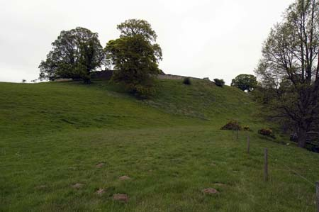 Hulne Priory from South